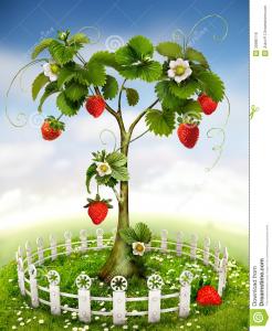arbol de fresas